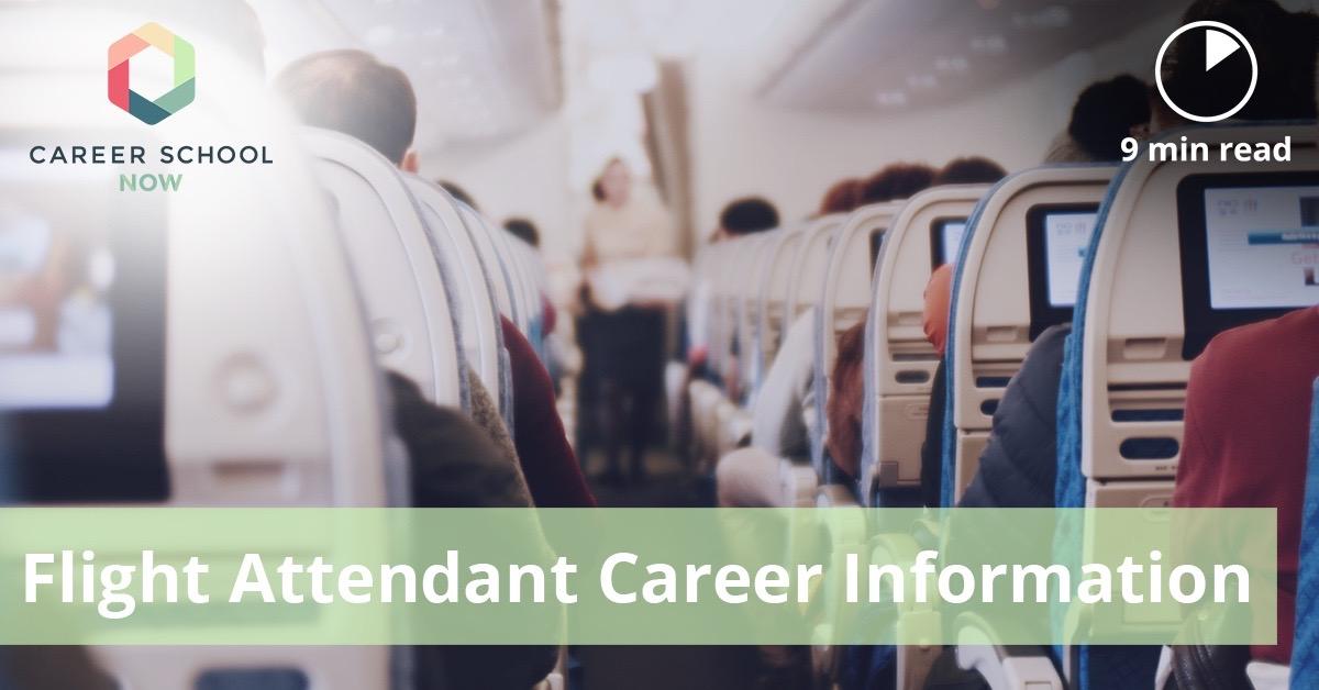 Flight Attendant Training, Job Description U0026 Salary Info